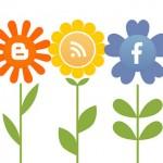 Social Media Blumen