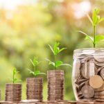 aufgetürmtes Geld mit Pflanzen - Geld und Pflanzen wachsen