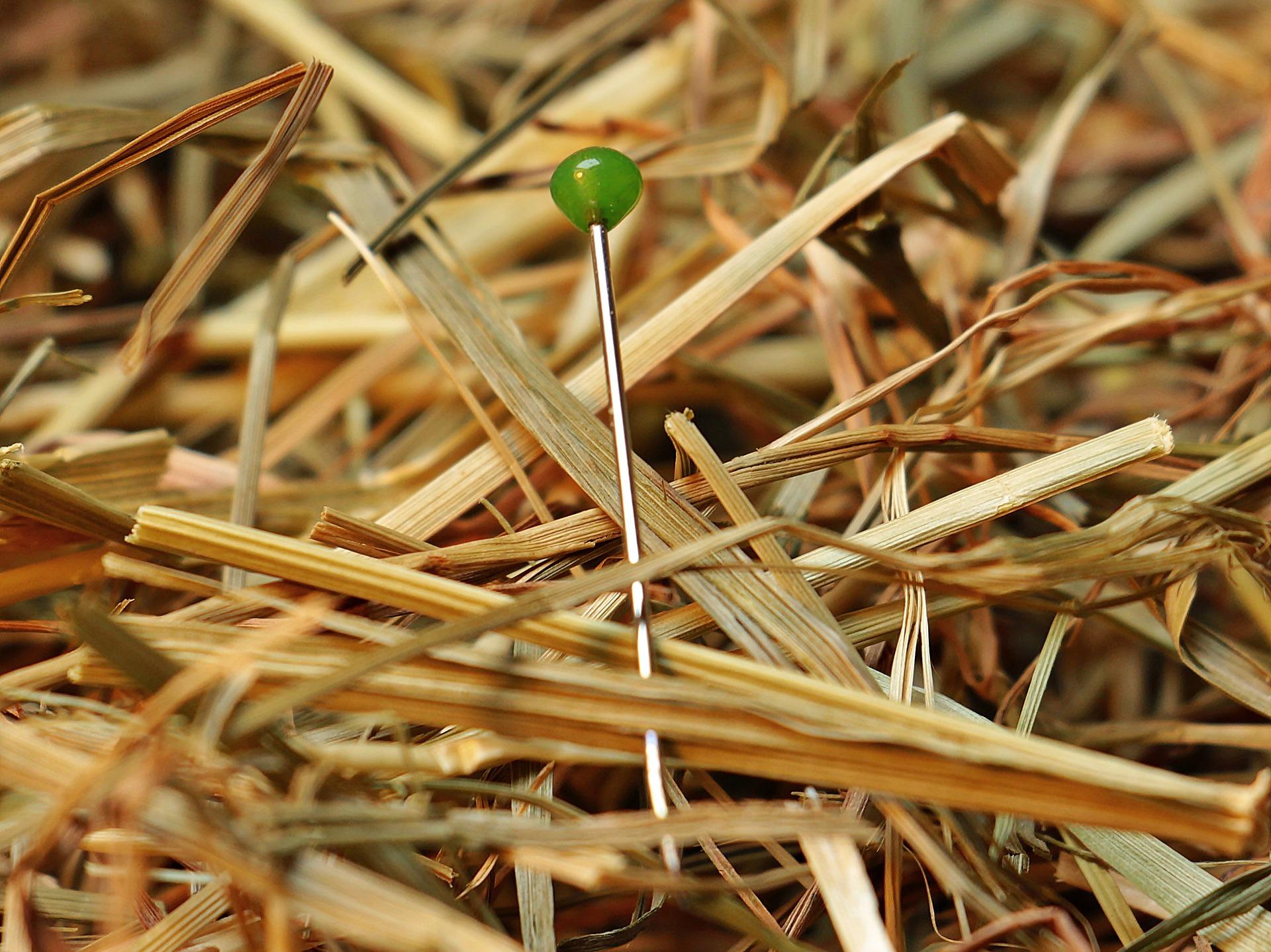 Die Nadel im Heuhaufen – Tipps für effizientes googlen